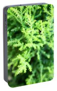 Cypress Leaves Close Up Portable Battery Charger