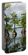 Cypress Reflections Portable Battery Charger