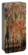Cypress Winter Colors Portable Battery Charger