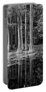 Cypresses In Tallahassee Black And White Portable Battery Charger