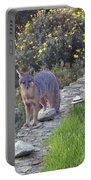 D-a0037 Gray Fox On Our Property Portable Battery Charger
