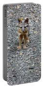 D-a0051-dc Gray Fox Pup Portable Battery Charger