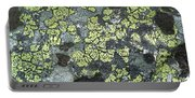 D07343-dc Lichen On Rock Portable Battery Charger