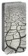 D17845-dried Mud Patterns  Portable Battery Charger