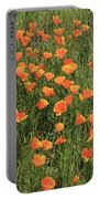 d7b6307 California Poppies Portable Battery Charger