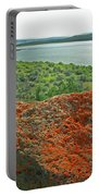 Da5869 Lichen Covered Rock Portable Battery Charger