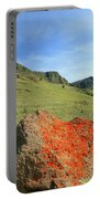 Da5872 Lichen Covered Rock Below Abert Rim Portable Battery Charger