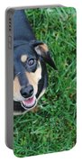 Dachshund Looking At Camera Smiling  Portable Battery Charger