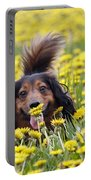 Dachshund On A Meadow In Bloom Portable Battery Charger