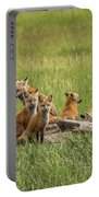 Daddy's Foxy Daycare Portable Battery Charger