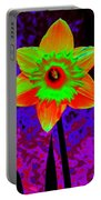 Daffodil 2 Portable Battery Charger