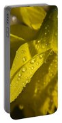 Daffodil Dew Portable Battery Charger