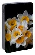 Daffodil Portable Battery Charger