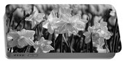 Daffodil Glow Monochrome By Kaye Menner Portable Battery Charger