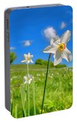 Daffodils Blossimg At Cavalla Plains 2017 II - Fioritura Dei Narcisi Al Pian Della Cavalla 2017 Portable Battery Charger