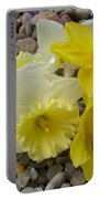 Daffodils Flower Artwork 29 Daffodil Flowers Agate Rock Garden Floral Art Prints Portable Battery Charger