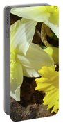 Daffodils Flower Bouquet Rustic Rock Art Daffodil Flowers Artwork Spring Floral Art Portable Battery Charger