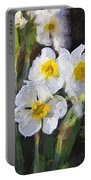 Daffodils In My Garden Portable Battery Charger