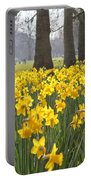 Daffodils In St James Park London Portable Battery Charger