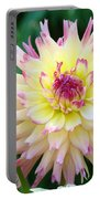 Dahlia Floral Pink Yellow Flower Garden Baslee Troutman Portable Battery Charger