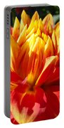 Dahlia Florals Orange Dahlia Flower Art Prints Canvas Portable Battery Charger