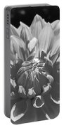 Dahlia In Black And White 2 Portable Battery Charger