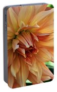 Dahlia In Bloom Portable Battery Charger