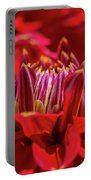 Dahlia Study 1 Portable Battery Charger