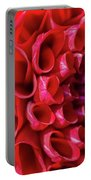 Dahlia Study 3 Portable Battery Charger