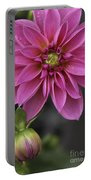 Dahlia With Dew In Pink Portable Battery Charger
