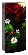 Daisies At The Boathouse Portable Battery Charger