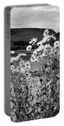 Daisies By The Roadside At Loch Linnhe B W Portable Battery Charger