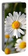 Daisies Flowers Field Blurriness 107162 2048x2048 Portable Battery Charger