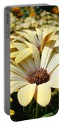 Daisies Flowers Landscape Art Prints Daisy Floral Baslee Troutman Portable Battery Charger