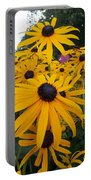 Daisies From Niagara Portable Battery Charger