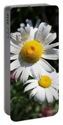 Daisies In The Sunshine Portable Battery Charger