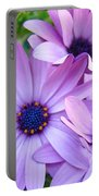 Daisies Lavender Purple Daisy Flowers Baslee Troutman Portable Battery Charger