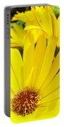 Daisies Summer Garden Art Print Yellow Daisy Baslee Portable Battery Charger