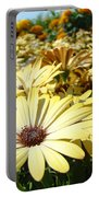 Daisies Yellow Daisy Flowers Garden Art Prints Baslee Troutman Portable Battery Charger