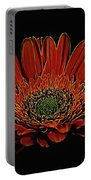 Daisy 105 Portable Battery Charger