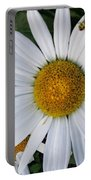 Daisy And Company Portable Battery Charger