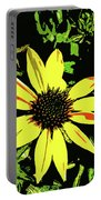 Daisy Bell Portable Battery Charger