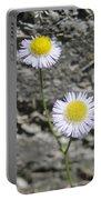 Daisy Fleabane Flowers Portable Battery Charger