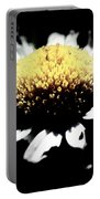 Daisy Gray Portable Battery Charger