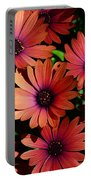 Daisy Group Shot Portable Battery Charger