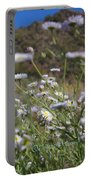 Daisy Magic Portable Battery Charger