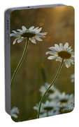Daisy Sunset Portable Battery Charger