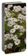 Daisy Wave Portable Battery Charger