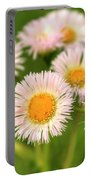 Daisy Weeds Portable Battery Charger