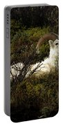 Dall Sheep Ram Portable Battery Charger